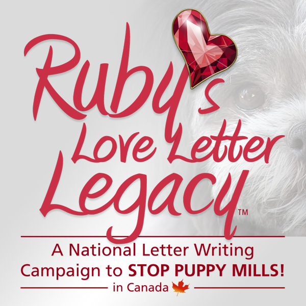Logo design: Ruby's Love Letter Legacy campaign